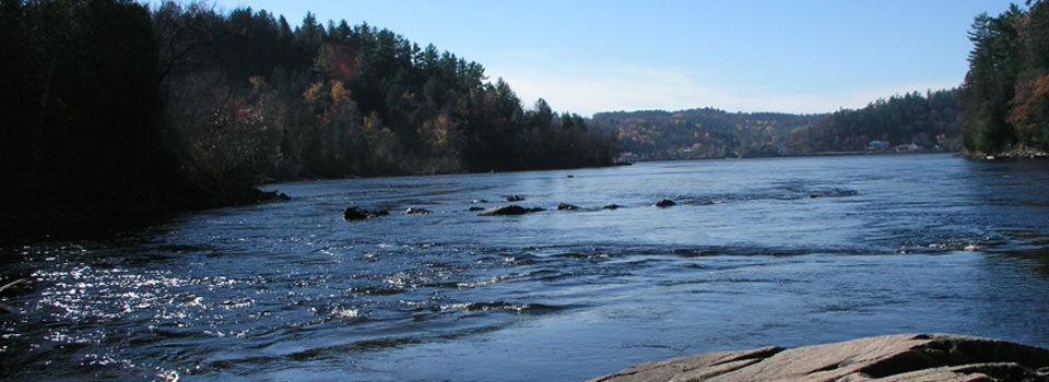 Friends of the Gatineau - river view
